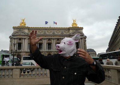 twt-opera-de-paris-cochon