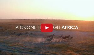 Breathtaking Drone Footage Filmed Throughout Africa