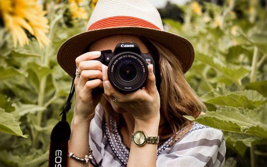 MIP: Fotografías destacadas de Agosto '19