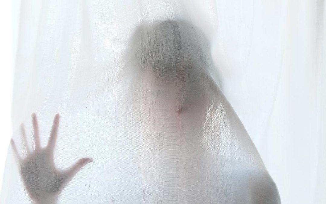 La novia del fantasma por Yangsze Choo