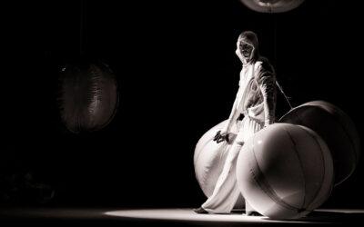 José Reinaldo Guédez | El delirio de la imagen en movimiento